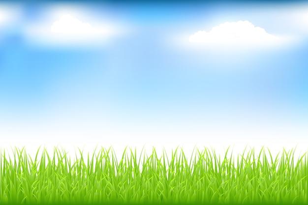 緑の芝生と雲と青い空 Premiumベクター