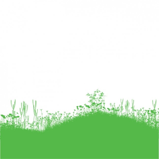 Green Grass and Flower Background