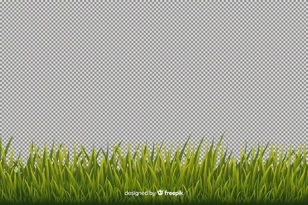 Stile realistico del bordo dell'erba verde Vettore gratuito