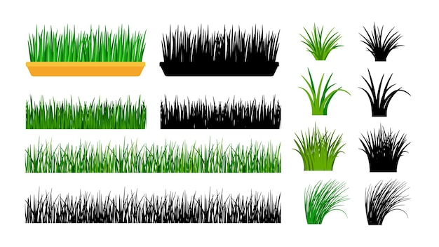 Green grass. bushes, spring meadow and planting in pot. Premium Vector