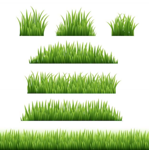 Green grass frame set  transparent background Premium Vector