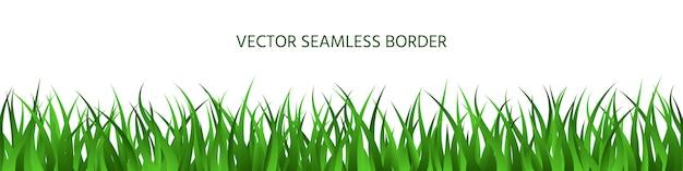 Green grass seamless border, spring lawn herbal panoramic background, summer horizontal banner. Premium Vector