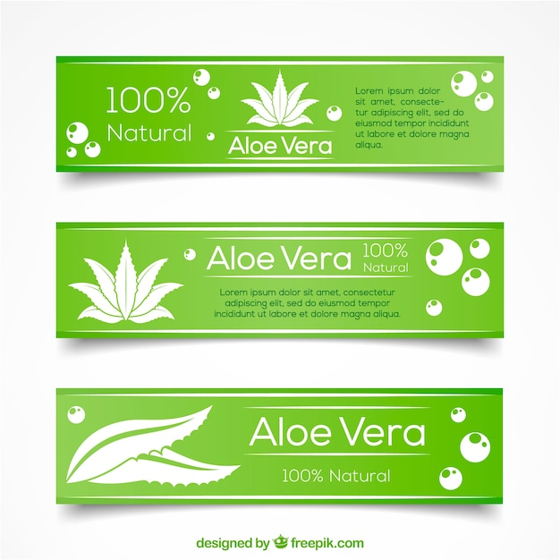 Green hand drawn aloe vera banners Premium Vector