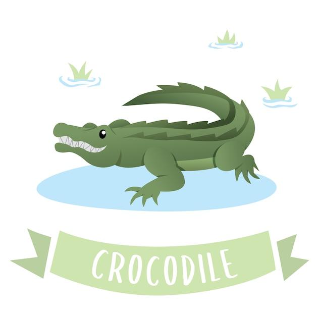 A green happy crocodile Premium Vector