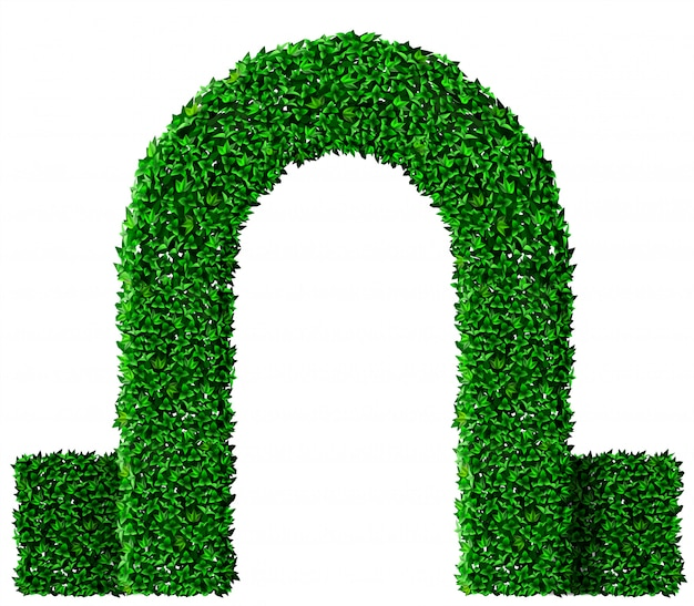 Green ivy grape arch Premium Vector