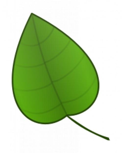 Green leaf cartoon Vector | Free Download