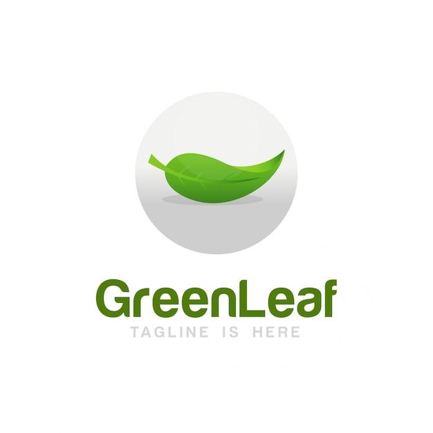 Green leaf logo Premium Vector