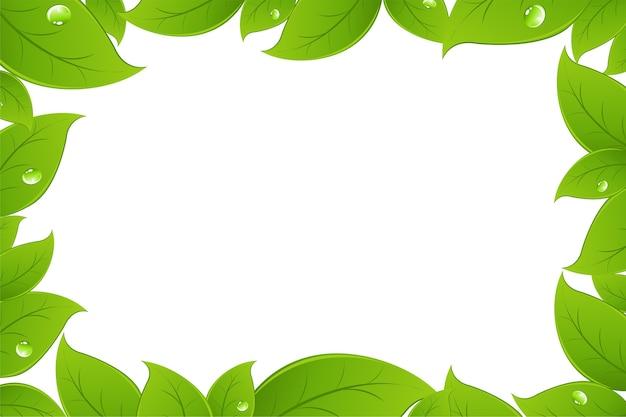 緑の葉の背景、白い背景、イラスト Premiumベクター