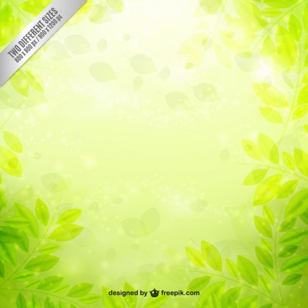 Green leaves background Free Vector