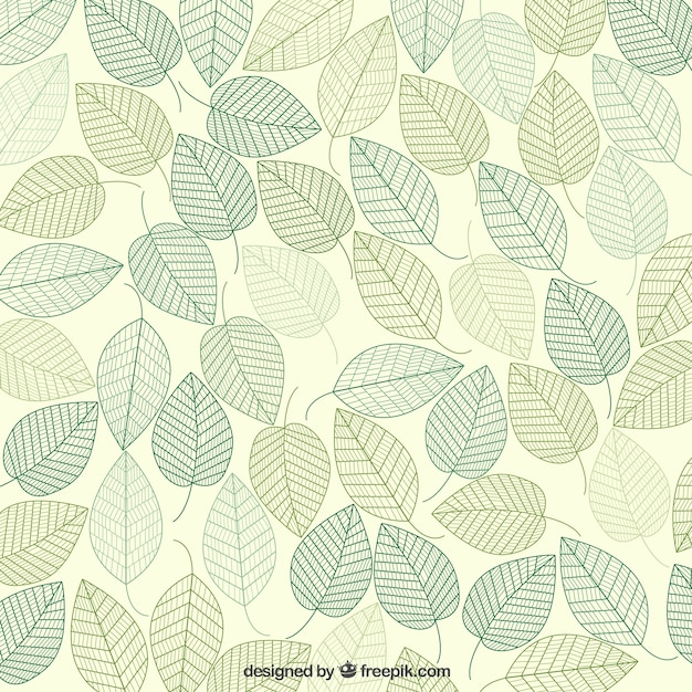 Green leaves background Premium Vector