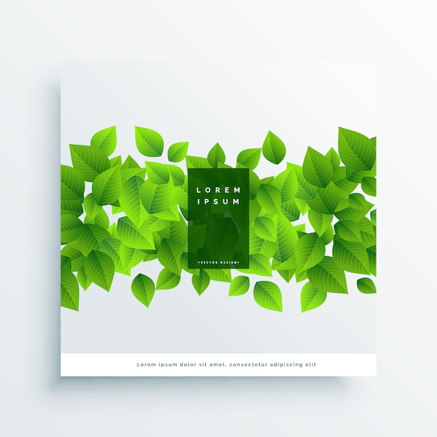 Green leaves card cover background Free Vector