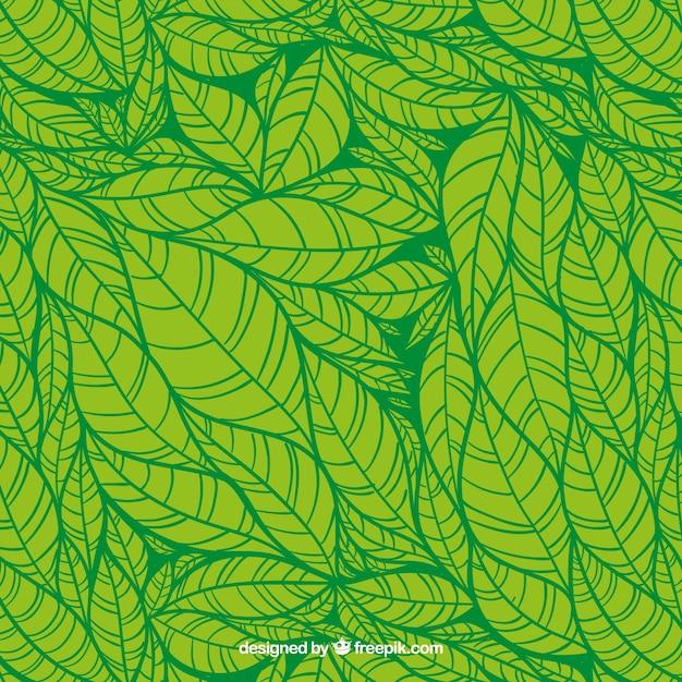 Green leaves hand drawn pattern Premium Vector