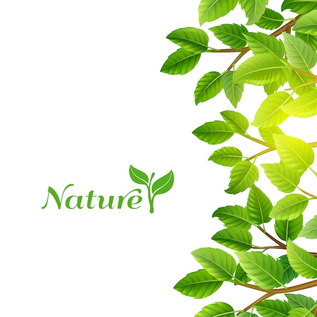 Green leaves nature background print Free Vector