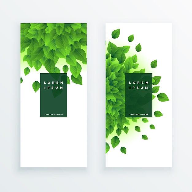 Green leaves vertical banner background Free Vector