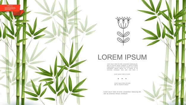 대나무 줄기와 잎 현실적인 스타일 일러스트와 함께 녹색 자연 열대 식물 배경 무료 벡터