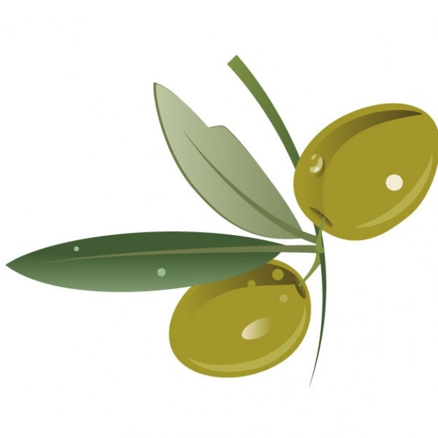 Green Olive Fruit With Leaves