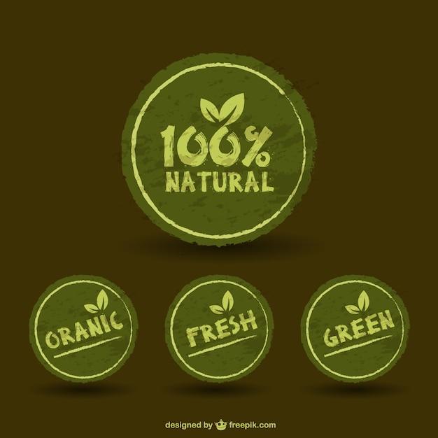 Green retro stickers Free Vector