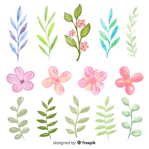 Green shaded leaves and pink roses collection Free Vector
