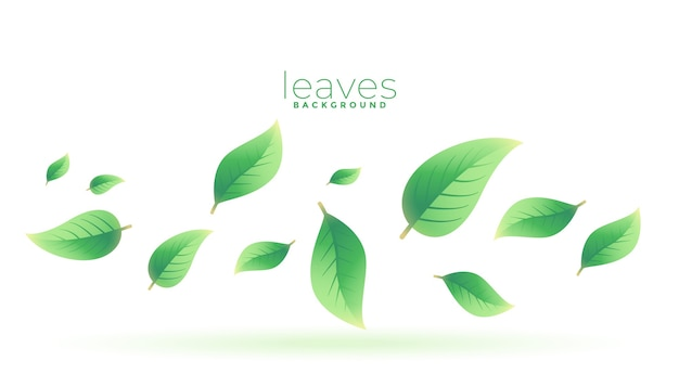 Green tea leaves falling background design Free Vector