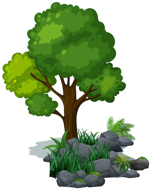 Green tree and grass on the rocks Free Vector