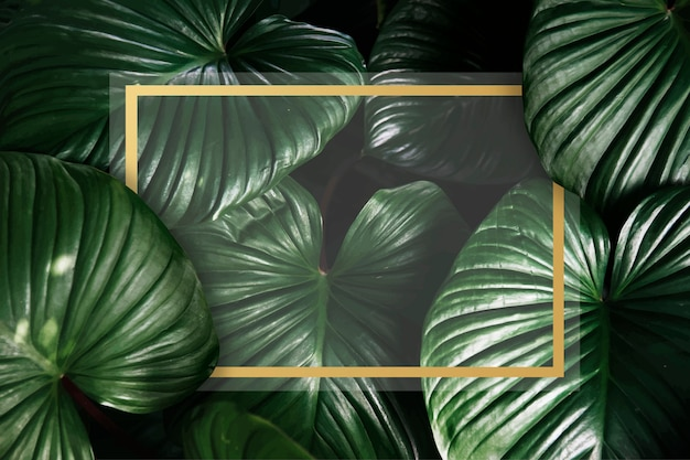 Green tropical background Free Vector