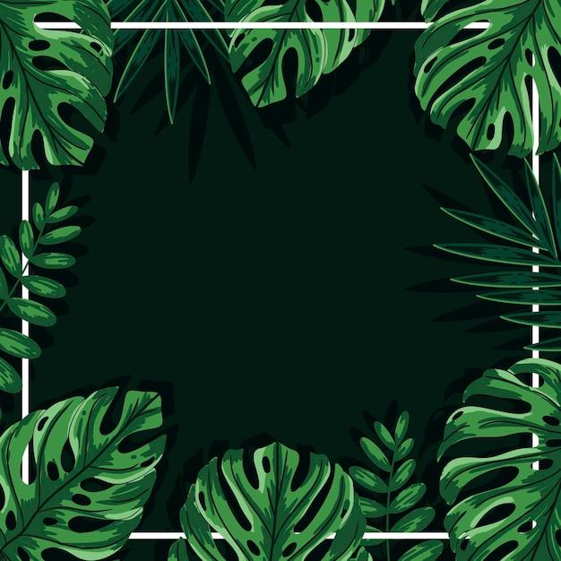 Зеленые тропические листья фон с рамкой Бесплатные векторы