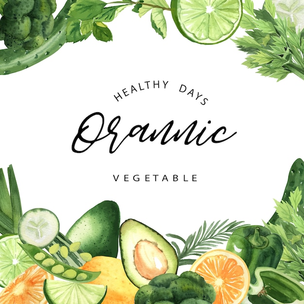 Green vegetables watercolor organic frame, cucumber, peas, broccoli, celery Free Vector