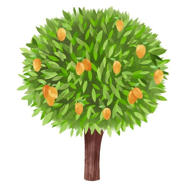 Green watercolor mango tree Free Vector