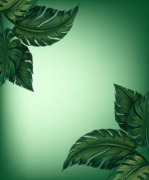 Greenery leaves Free Vector