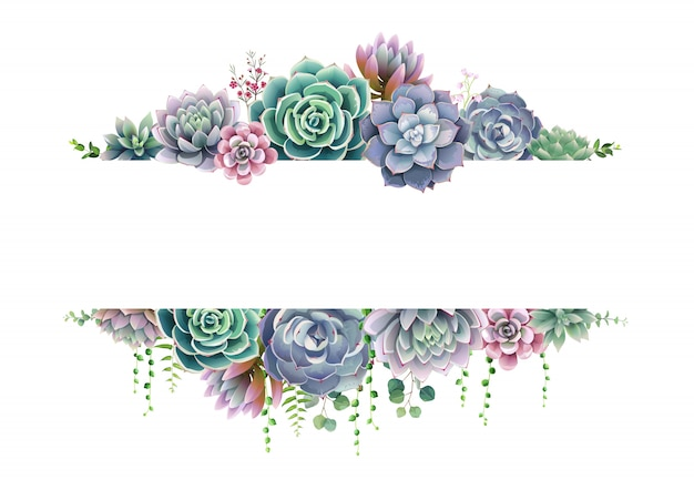 Greenery, succulent and branches frame border Premium Vector