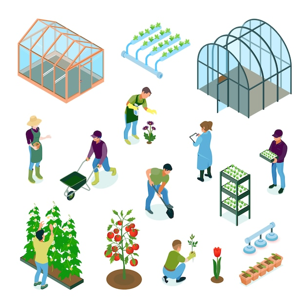 Greenhouse glasshouse hydroponic system vegetables flowers cultivation irrigation facilities isometric elements set Free Vector