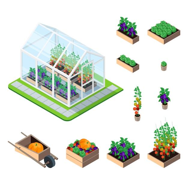 Greenhouse isometric set Free Vector