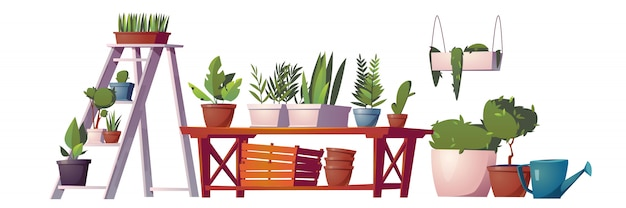 Greenhouse plants, orangery or floristic store interior stuff, garden rack with potted flowers, Free Vector