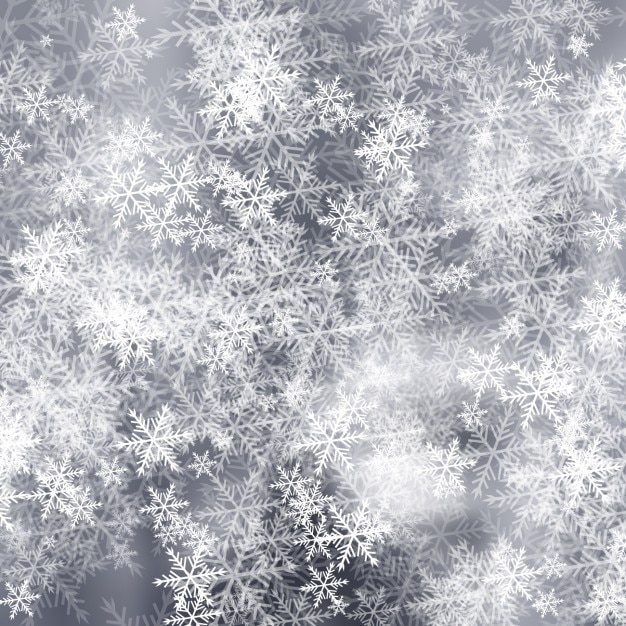Grey frost background with snowflakes Free Vector