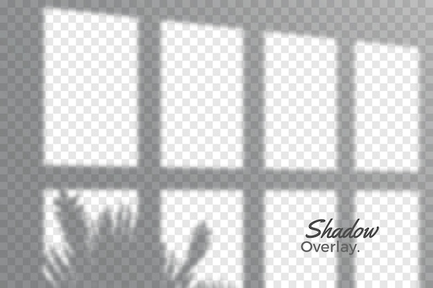 Grey overlay effect of transparent shadows theme Free Vector