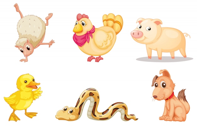 Group of animals Free Vector