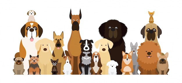 Group of dog breeds illustration, various size, front view, pet Premium Vector