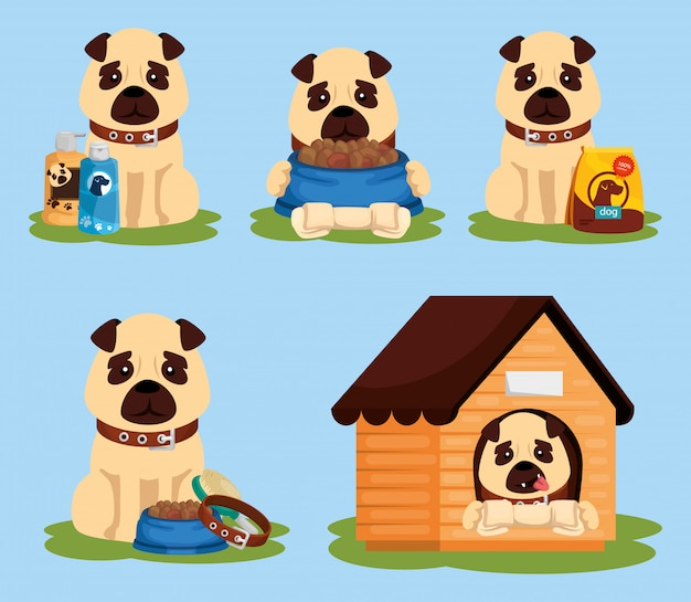 Group of dogs with icons Premium Vector