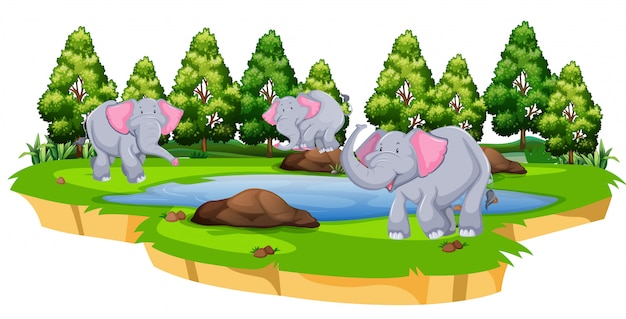 Group of elephant in nature Free Vector