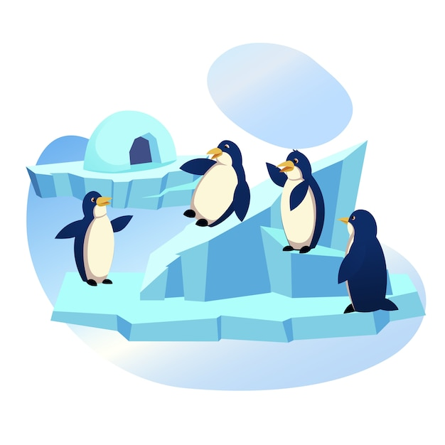 Group of funny penguins playing on ice floe, zoo Premium Vector