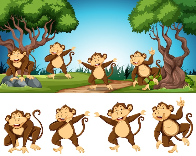 Group of monkey in nature Free Vector