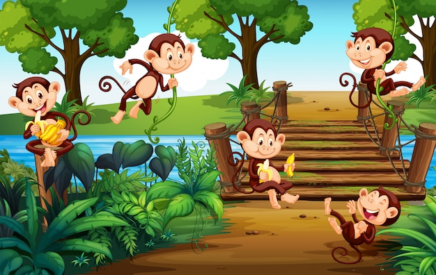 A group of monkey  at the park Premium Vector