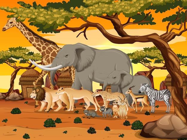 숲 현장에서 아프리카 야생 동물의 그룹 무료 벡터