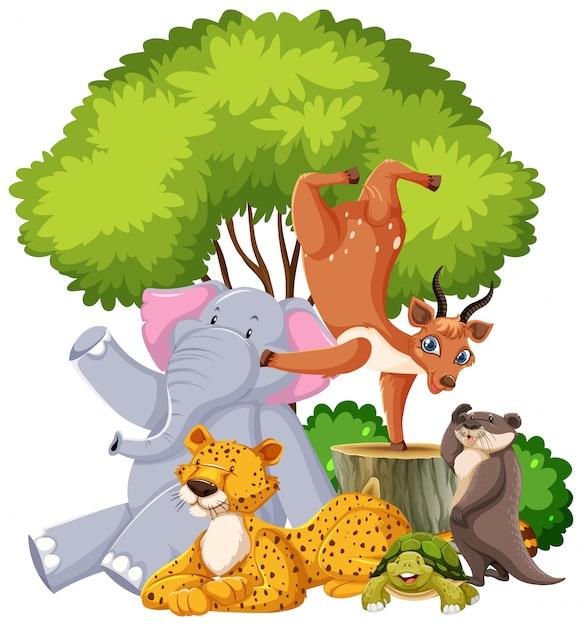 고립 된 야생 동물의 그룹 무료 벡터