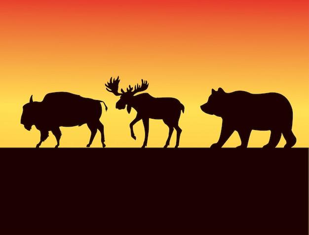 Группа силуэтов диких животных на закате Premium векторы