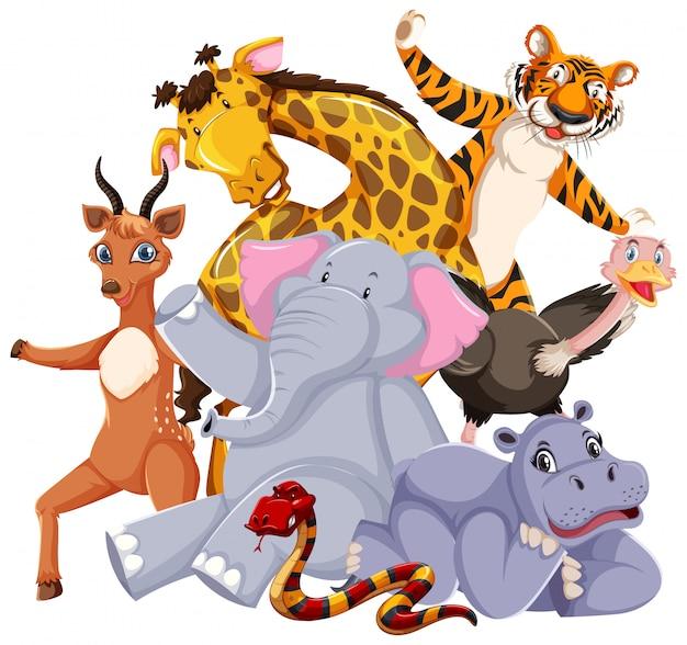 野生動物のグループ 無料ベクター