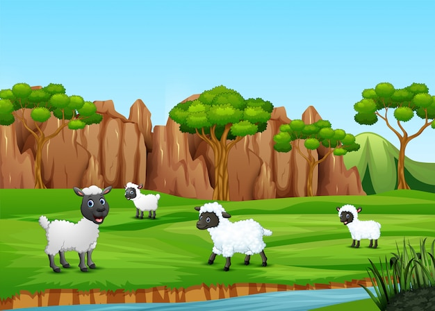 A group of sheep playing in the field Premium Vector