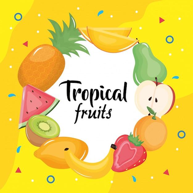 Group of tropical and fresh fruits circular frame Premium Vector