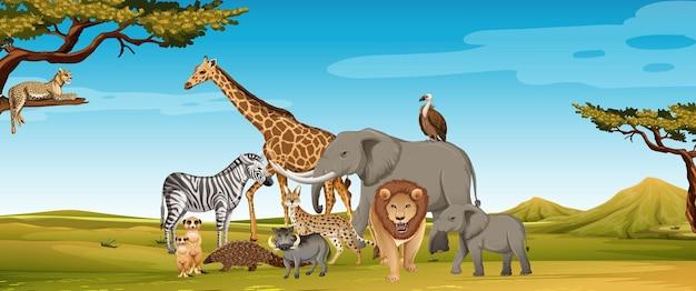 Group of wild african animal in the zoo scene Premium Vector