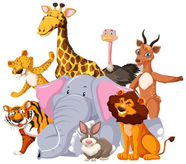 Group of wild animal cartoon character Free Vector